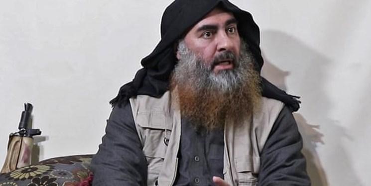 آمریکا البغدادی را از بیم لو رفتن اسرار داعش کشت